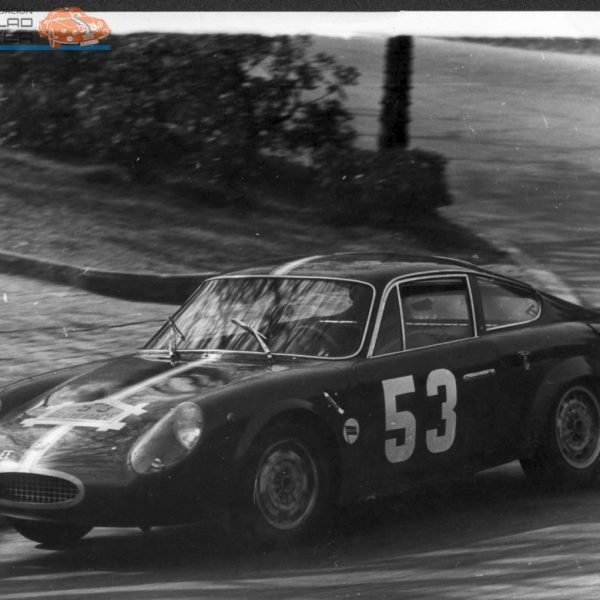 zoom_1358203559_fiat_abarth_1965race6